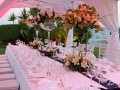 Amathus Beach Hotel - Wedding Dinner the Lawn Gardens
